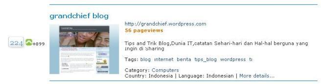 Ini tampilan peringkat blogku sehari setelah saya mendaftar ke top of blogs
