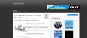 theme blog monetize vs user friendly